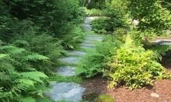 Wallach woodland path